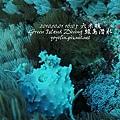 20101001 (2) 六米礁 p_IMG_3321.jpg