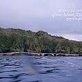 20101002 (1) 鋼鐵礁 p_IMG_3353.jpg