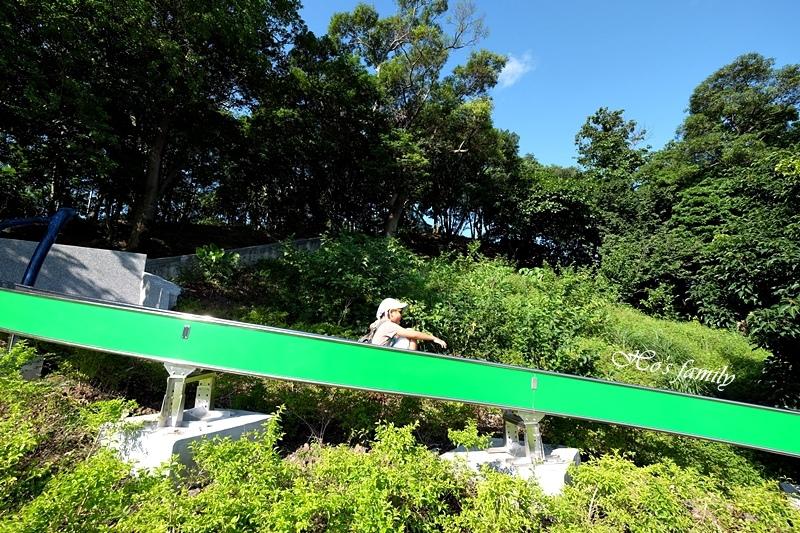 中和錦和運動公園25.JPG