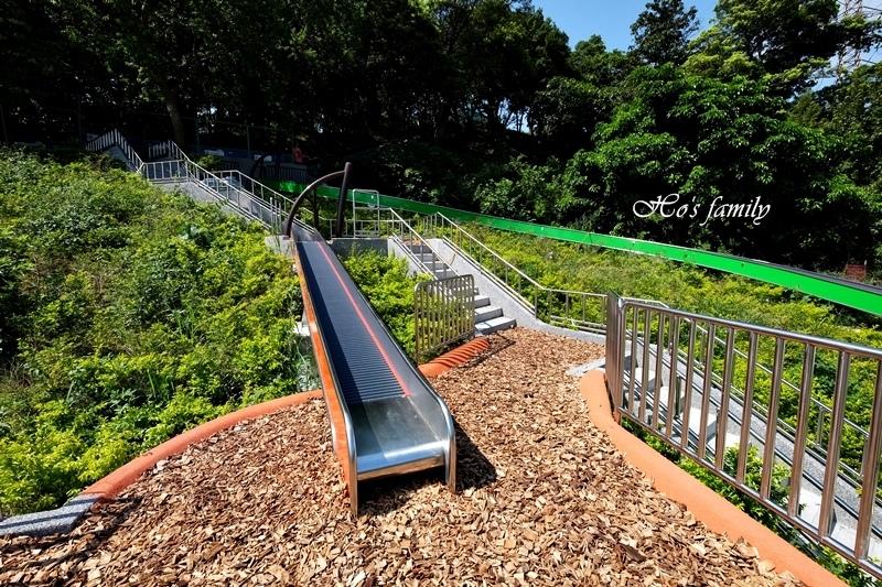 中和錦和運動公園28.JPG