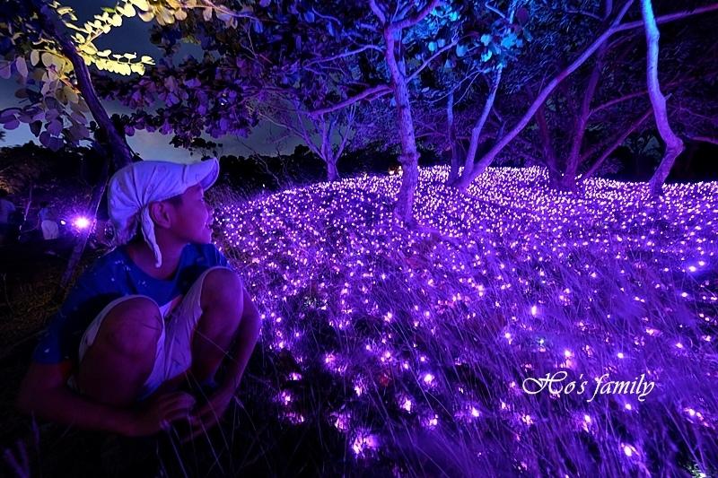 四重溪公園溫泉季23.JPG