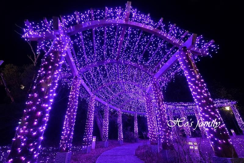 四重溪公園溫泉季46.JPG