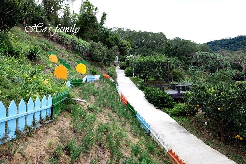 【苗栗景點】橙香森林21.JPG