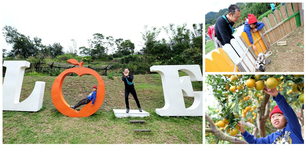 【苗栗景點】橙香森林fb.jpg