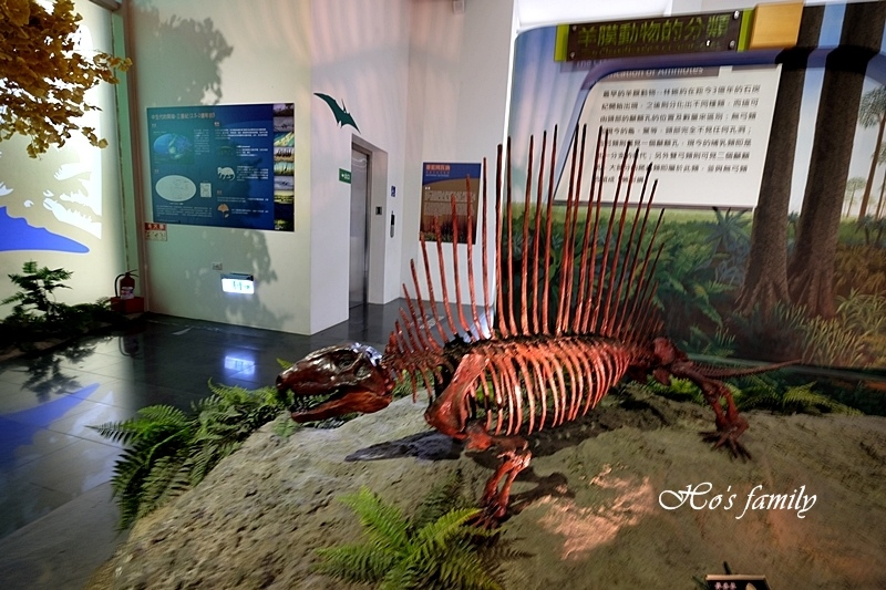 【台南親子景點】樹谷生活科學館11.JPG