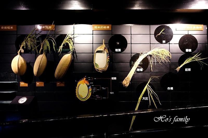 【台南親子景點】樹谷生活科學館42.JPG