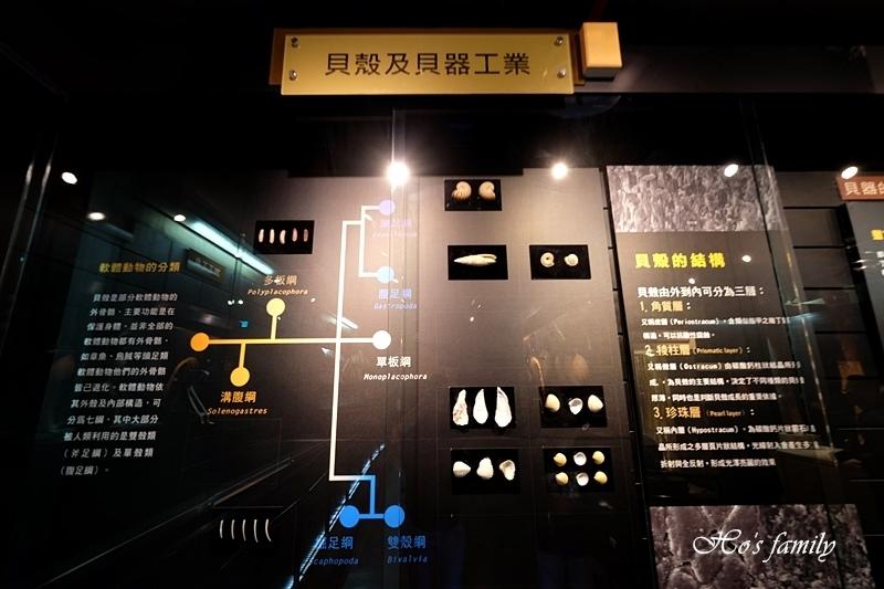 【台南親子景點】樹谷生活科學館44.JPG