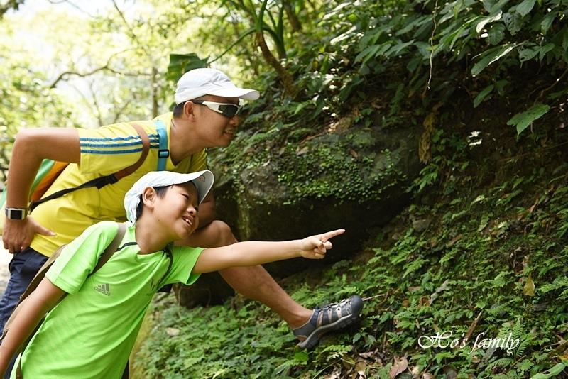 【新北親子景點】三峽滿月圓森林遊樂區4.JPG