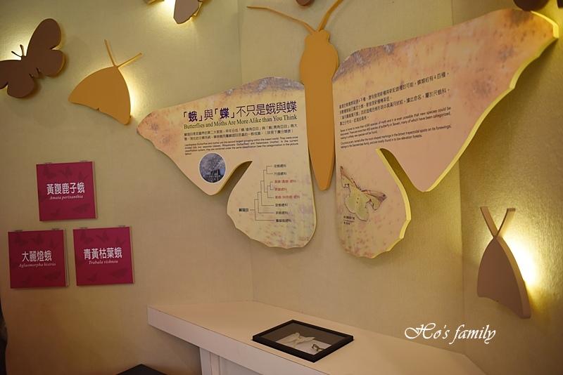 【新北親子景點】三峽滿月圓森林遊樂區22.JPG