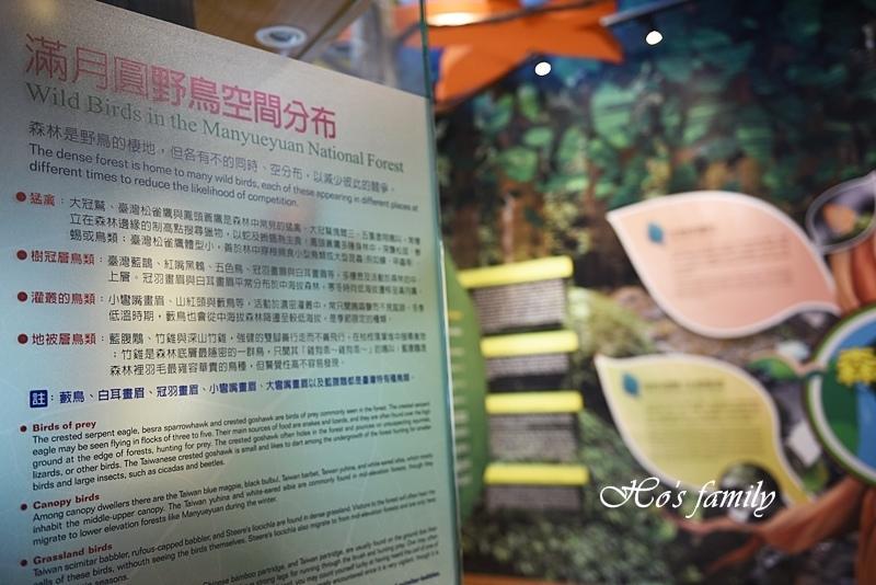 【新北親子景點】三峽滿月圓森林遊樂區31.JPG
