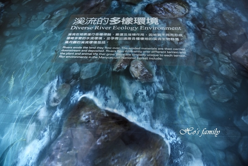 【新北親子景點】三峽滿月圓森林遊樂區37.JPG