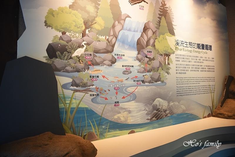 【新北親子景點】三峽滿月圓森林遊樂區38.JPG