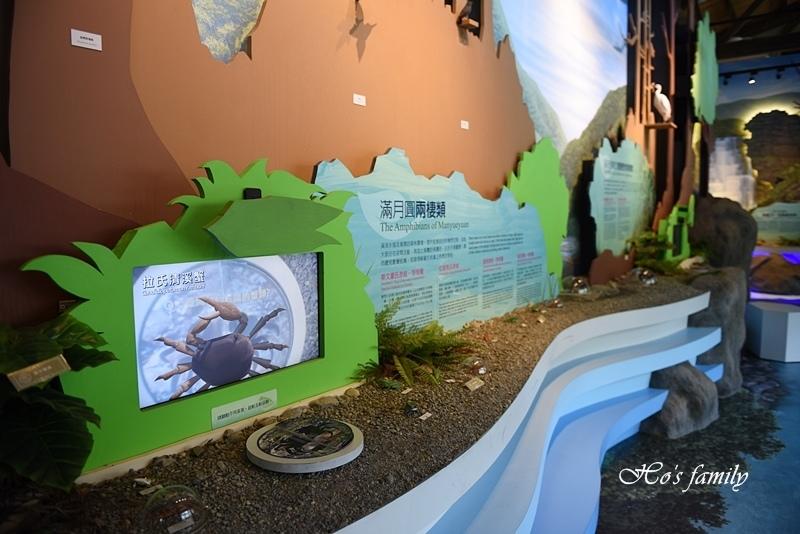 【新北親子景點】三峽滿月圓森林遊樂區39.JPG