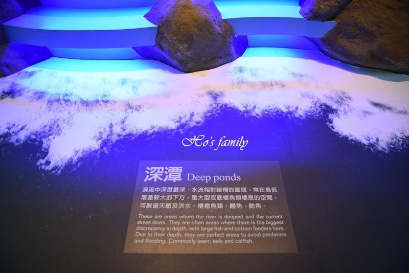【新北親子景點】三峽滿月圓森林遊樂區45.JPG