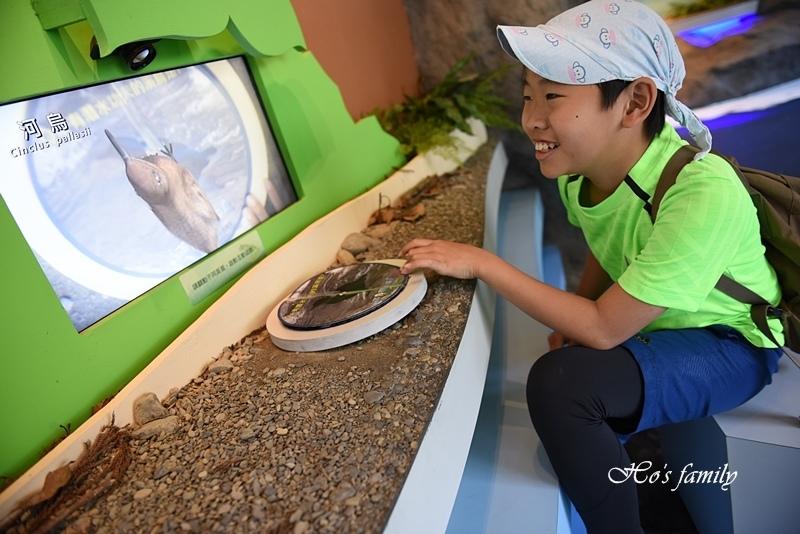 【新北親子景點】三峽滿月圓森林遊樂區52.JPG