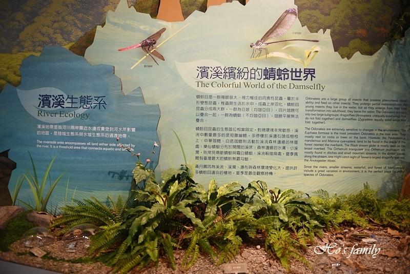 【新北親子景點】三峽滿月圓森林遊樂區54.JPG