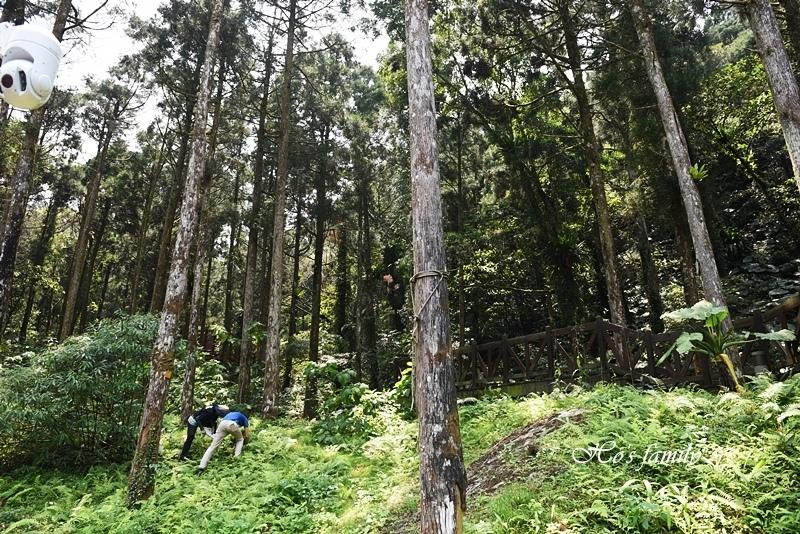 【新北親子景點】三峽滿月圓森林遊樂區57.JPG