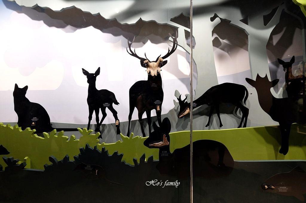 【台南親子景點】南科考古館~全新室內兒童探索樂園!球池沙坑、4D海洋劇場、考古遊戲體驗、驚奇文物展,銅板價玩一天67.JPG