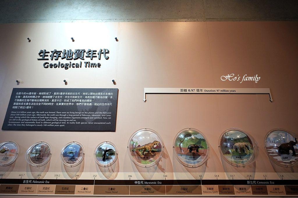 【台南親子景點】臺南左鎮化石園區14.JPG
