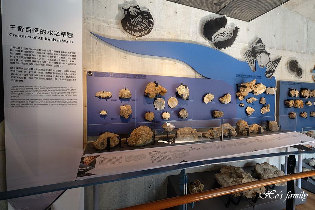 【台南親子景點】臺南左鎮化石園區54.JPG