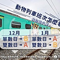 【新竹動物園彩繪列車】搭車時刻表、在哪上車、行駛時間30.JPG