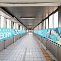 【新竹動物園彩繪列車】搭車時刻表、在哪上車、行駛時間34.JPG