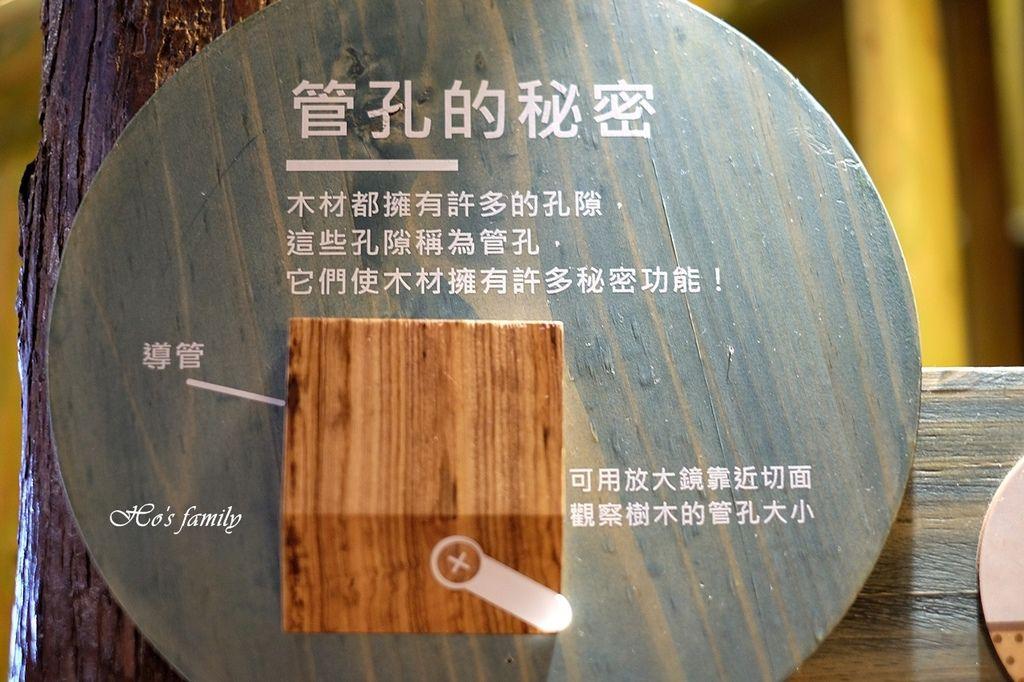 【台中親子室內遊樂園】木育森林台中麗寶店64.JPG