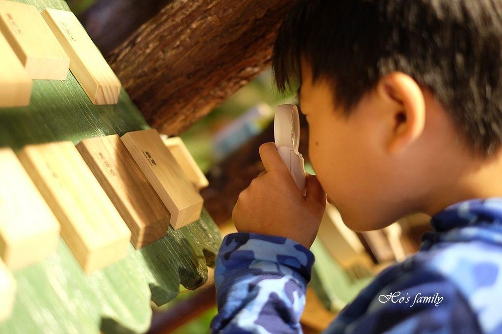 【台中親子室內遊樂園】木育森林台中麗寶店63.JPG
