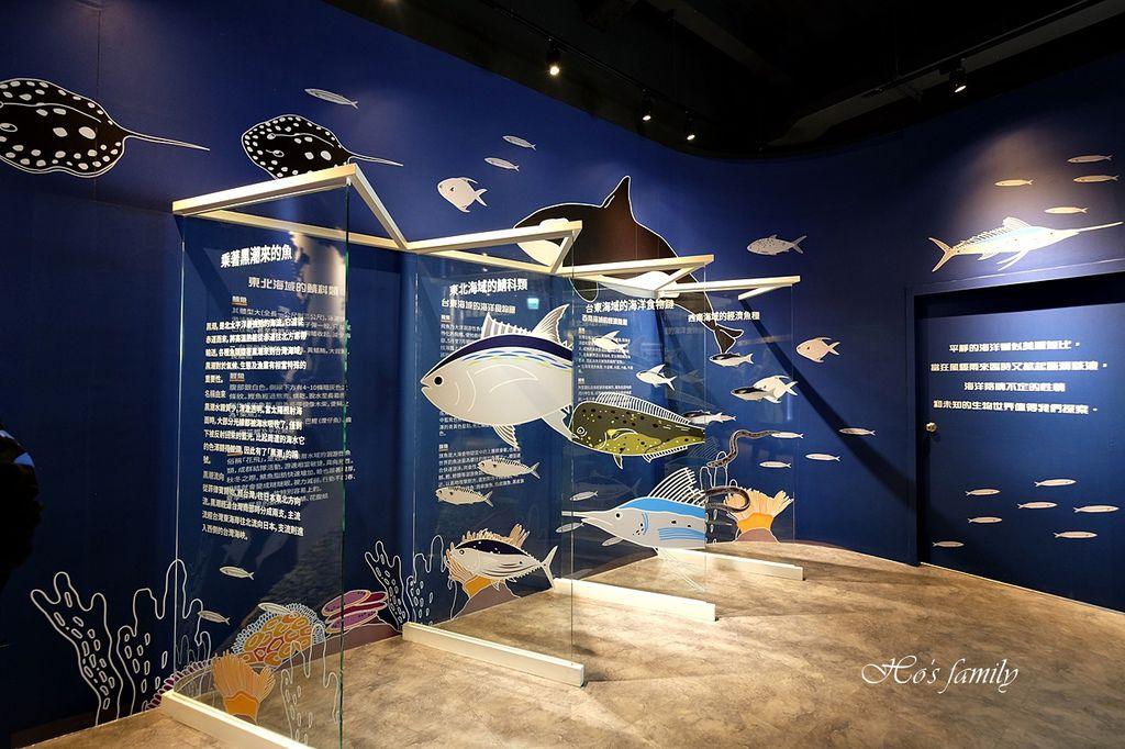 【台中室內親子景點】寶熊漁樂碼頭~世界唯一巨無霸旋轉釣魚機在這裡!亞洲首座釣魚觀光工廠玩虛擬釣魚、3D劇場、親子DIY、美式遊樂場25.JPG