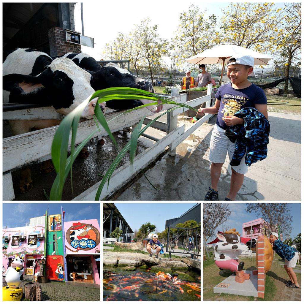【雲林親子景點】千巧谷牛樂園牧場~免門票親子農場進距離親近餵乳牛、玩沙.jpg