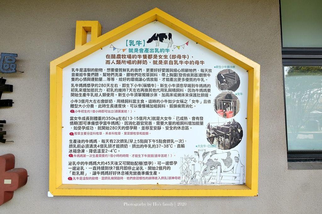 【雲林親子景點】千巧谷牛樂園牧場~免門票親子農場進距離親近餵乳牛、玩沙10.JPG