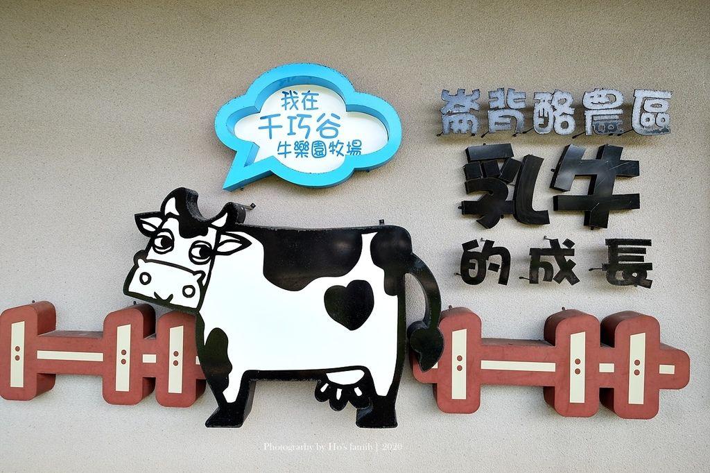 【雲林親子景點】千巧谷牛樂園牧場~免門票親子農場進距離親近餵乳牛、玩沙9.JPG
