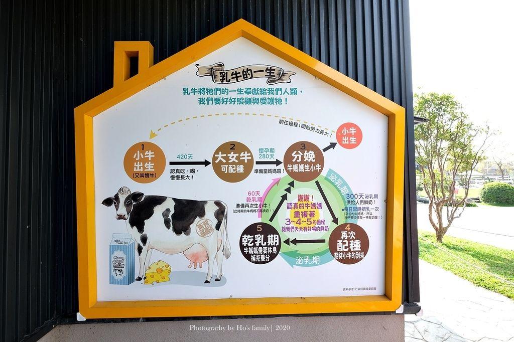 【雲林親子景點】千巧谷牛樂園牧場~免門票親子農場進距離親近餵乳牛、玩沙13.JPG