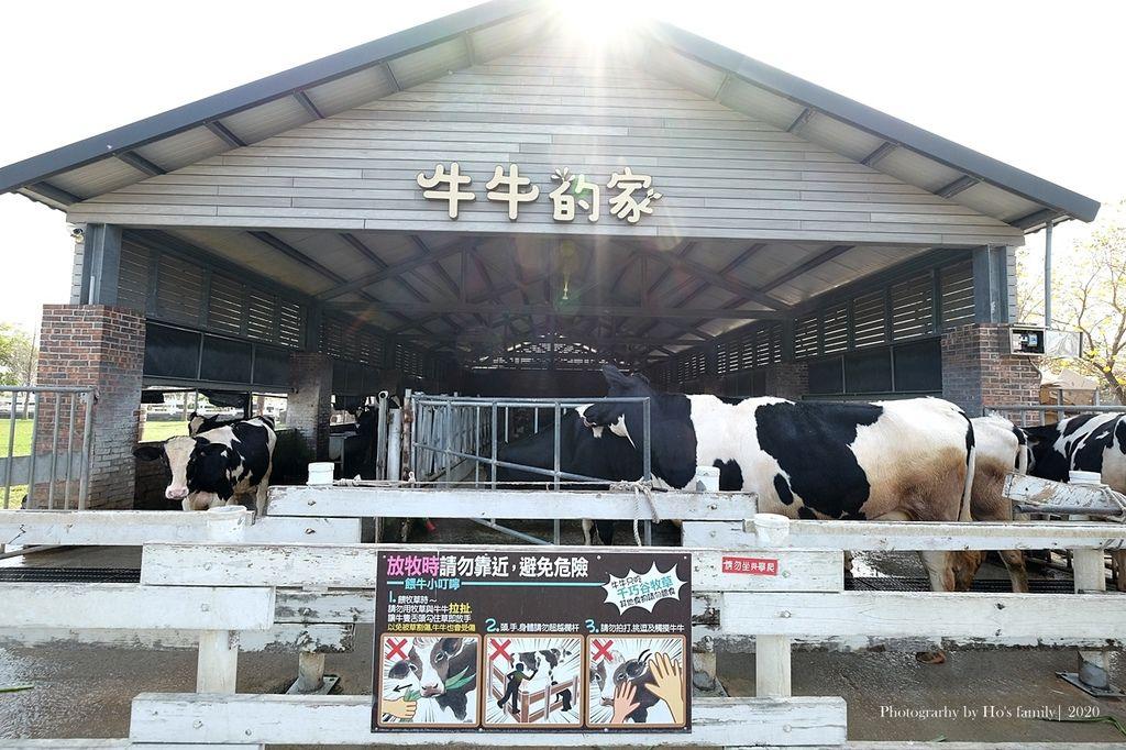 【雲林親子景點】千巧谷牛樂園牧場~免門票親子農場進距離親近餵乳牛、玩沙17.JPG