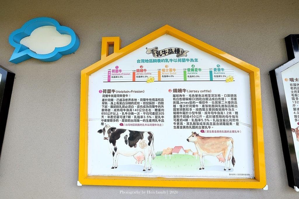 【雲林親子景點】千巧谷牛樂園牧場~免門票親子農場進距離親近餵乳牛、玩沙12.JPG