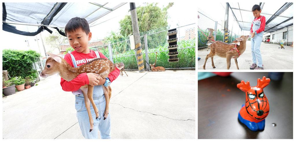 [桃園親子景點]搭機捷就能到!北台灣親近餵食梅花鹿~山腳鹿場水鹿之家|生態解說、餵牧草與ㄋㄟㄋㄟ、彩繪DIYfb.jpg