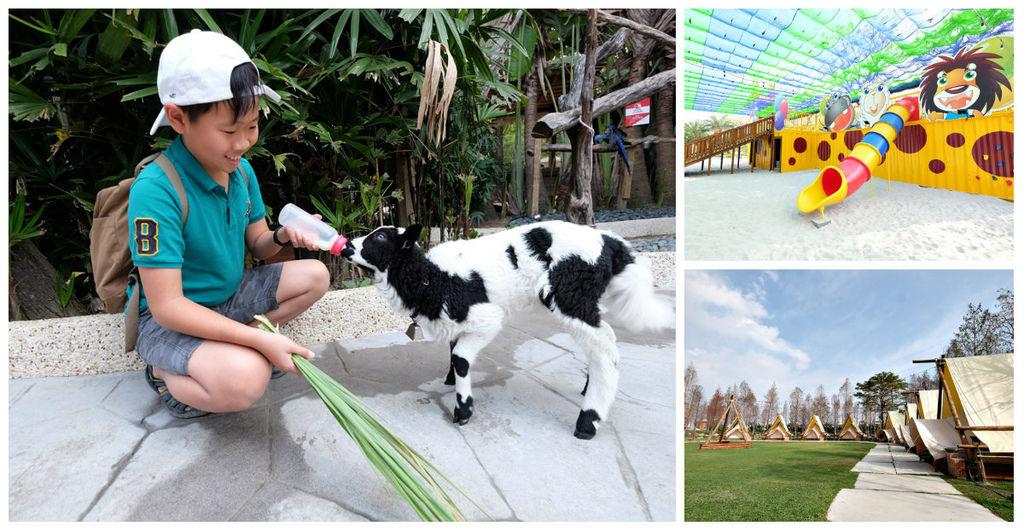 【高雄淨園農場】沙坑遊戲區、帳篷野餐新亮點!餵小動物、看飛機、坐小火車、烤肉,豐富親子農場景點一日遊fb2.jpg