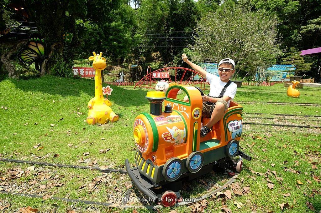 【桃園大溪親子景點】花開了休閒農場~免門票親子樂園!戲水池玩水、小火車、玩沙、餵小動物,親子農場一日遊17.JPG