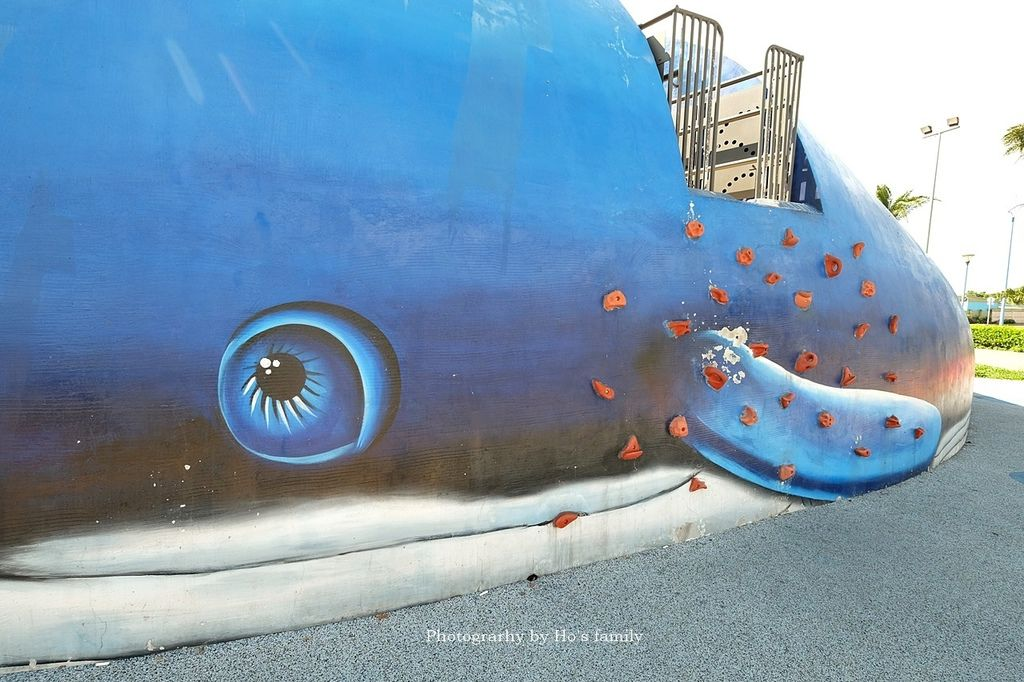 【新北特色公園】八里商港防災公園~大鯨魚地景共融公園遊戲場,八里親子景點一日遊推薦4.JPG