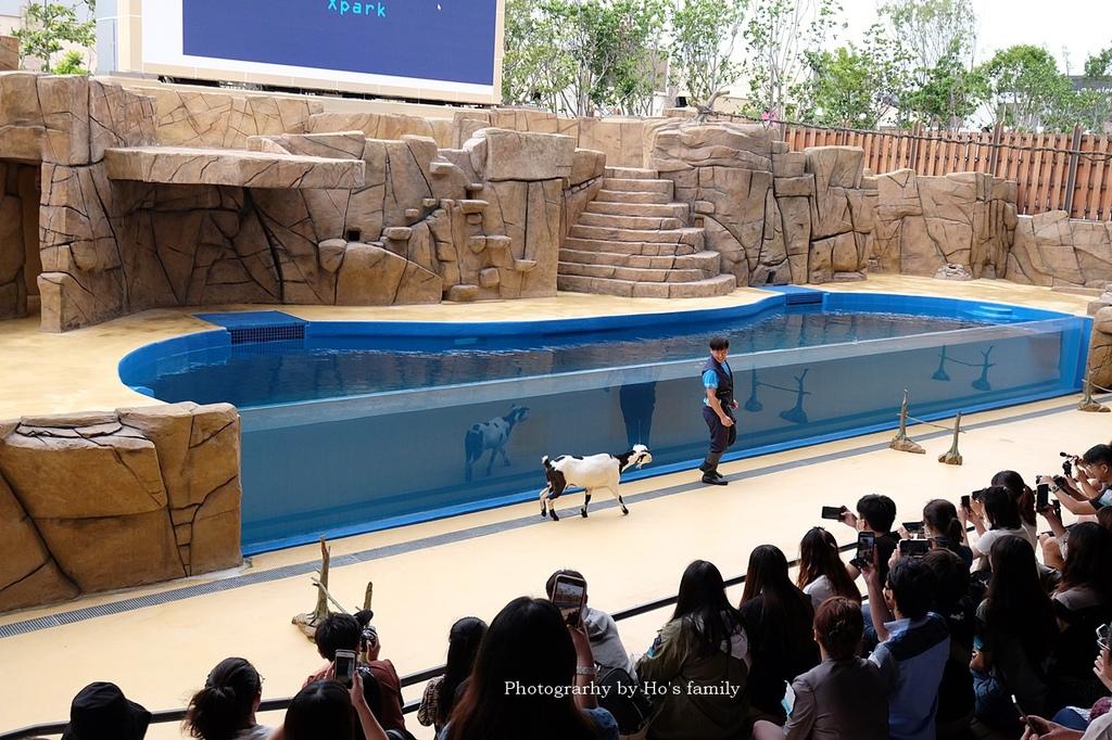 【桃園水族館Xpark】門票預購、開幕時間、飯店住宿、交通11.JPG