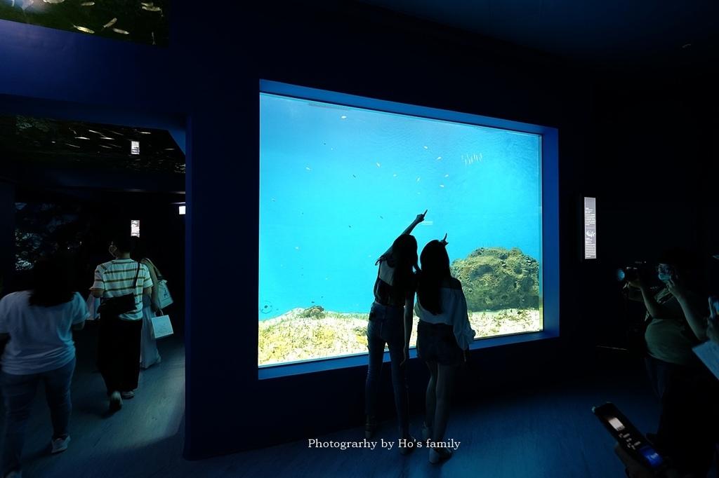 【桃園水族館Xpark】門票預購、開幕時間、飯店住宿、交通17.JPG