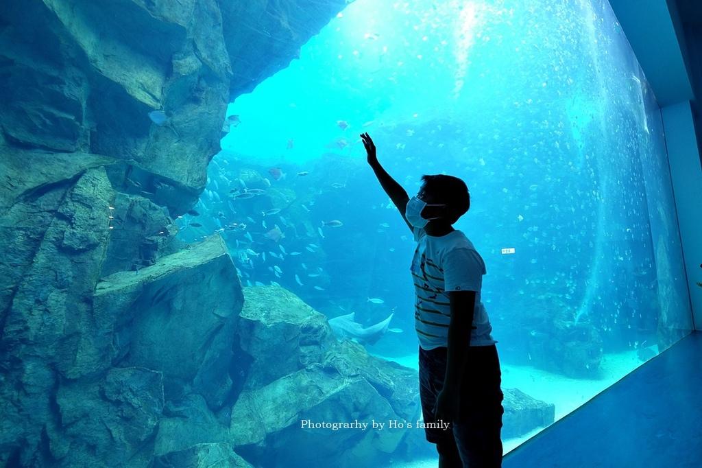 【桃園水族館Xpark】門票預購、開幕時間、飯店住宿、交通22.JPG
