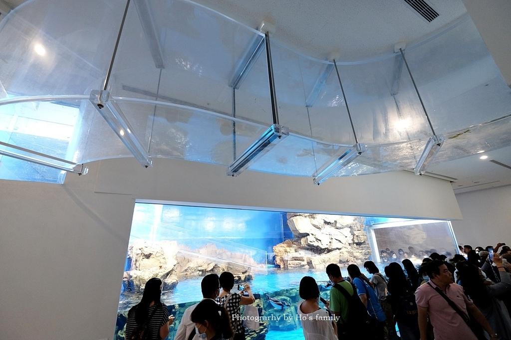 【桃園水族館Xpark】門票預購、開幕時間、飯店住宿、交通41.JPG