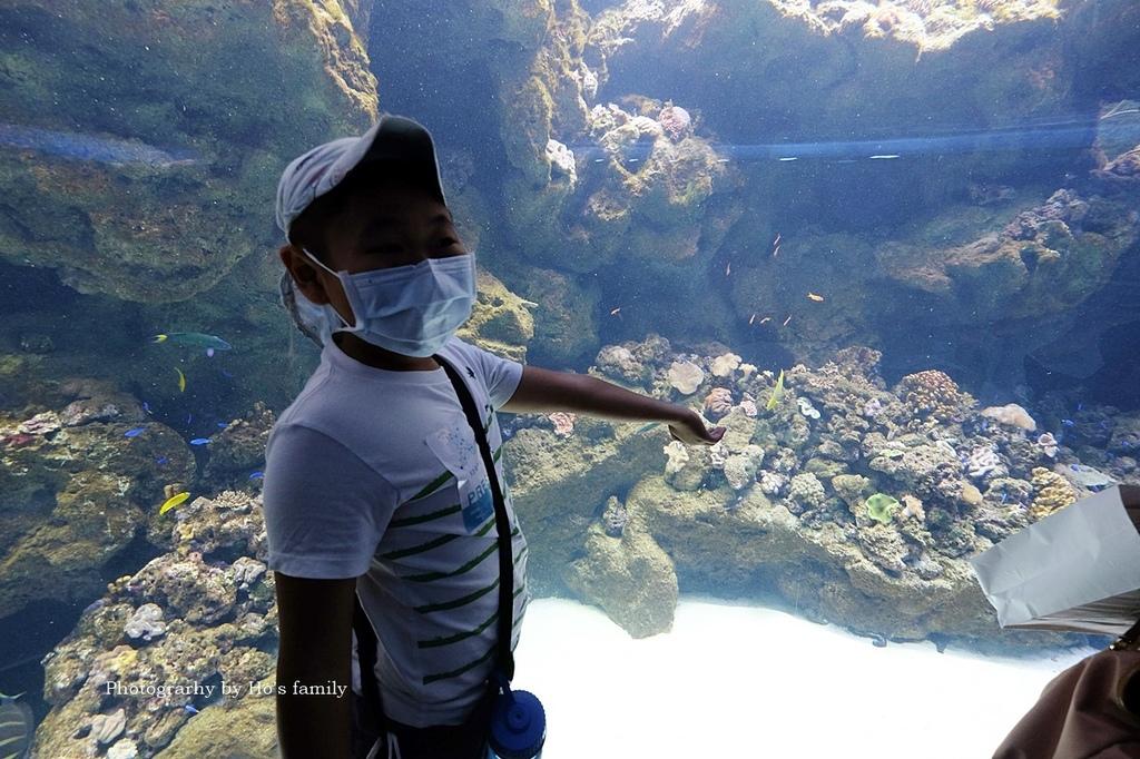 【桃園水族館Xpark】門票預購、開幕時間、飯店住宿、交通44.JPG