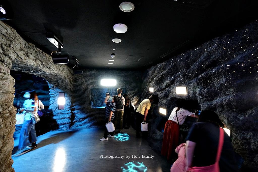 【桃園水族館Xpark】門票預購、開幕時間、飯店住宿、交通56.JPG