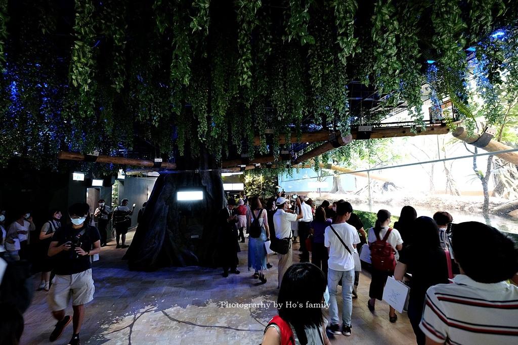 【桃園水族館Xpark】門票預購、開幕時間、飯店住宿、交通59.JPG