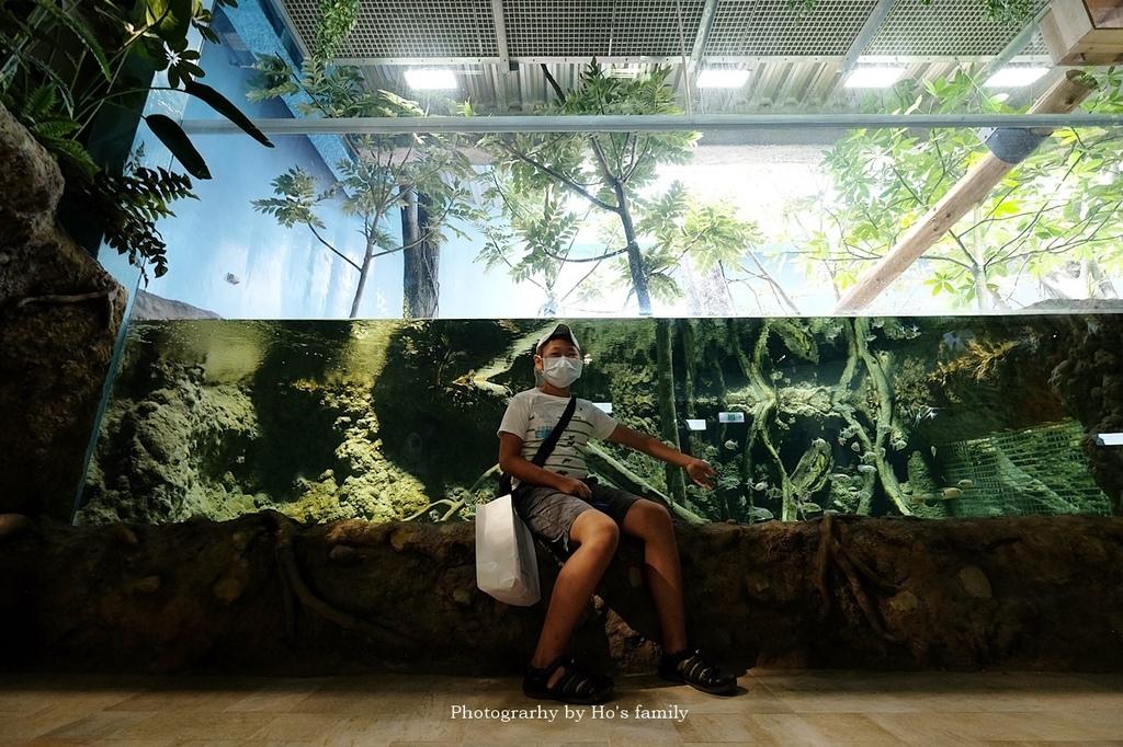 【桃園水族館Xpark】門票預購、開幕時間、飯店住宿、交通64.JPG