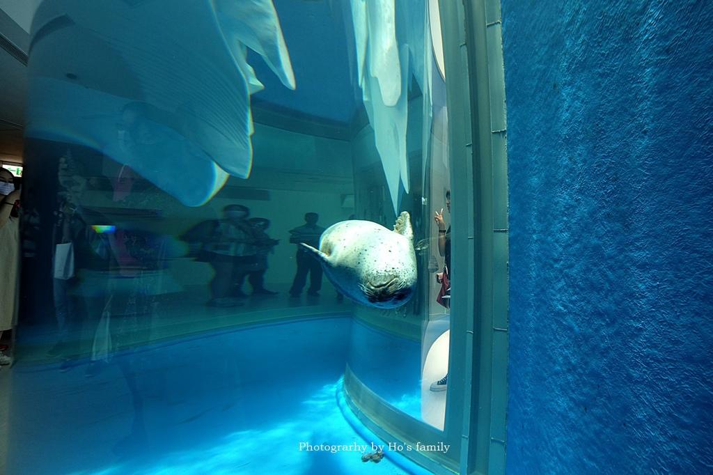 【桃園水族館Xpark】門票預購、開幕時間、飯店住宿、交通68.JPG