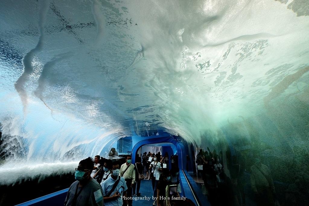 【桃園水族館Xpark】門票預購、開幕時間、飯店住宿、交通69.JPG