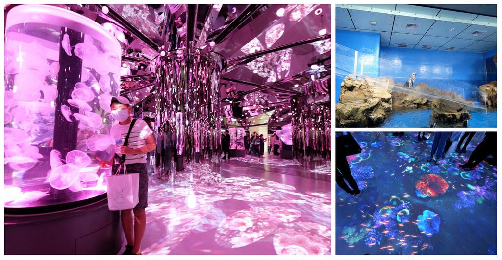【桃園水族館Xpark】門票預購、開幕時間、飯店住宿、交通fb.jpg
